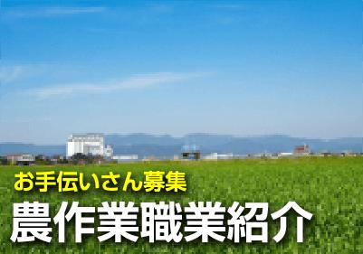 農作業職業紹介